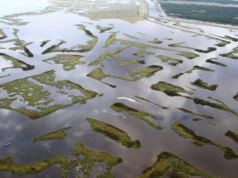 Canaux de destruction / Canals of destruction